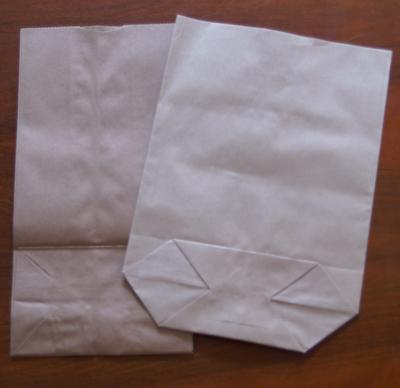 papiert ten mit boden f r paper bag alben der scrapbook. Black Bedroom Furniture Sets. Home Design Ideas